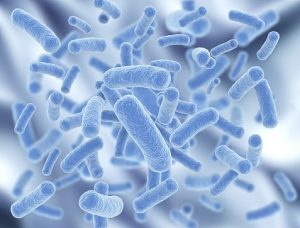 legionella-for-slider